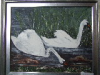 Swans on Loughcrew Lake - C Reilly